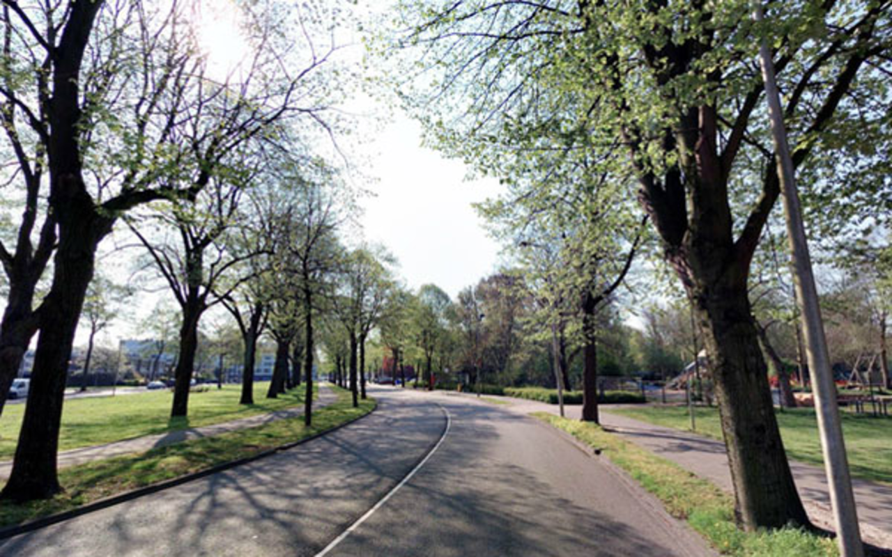 Neckardreef